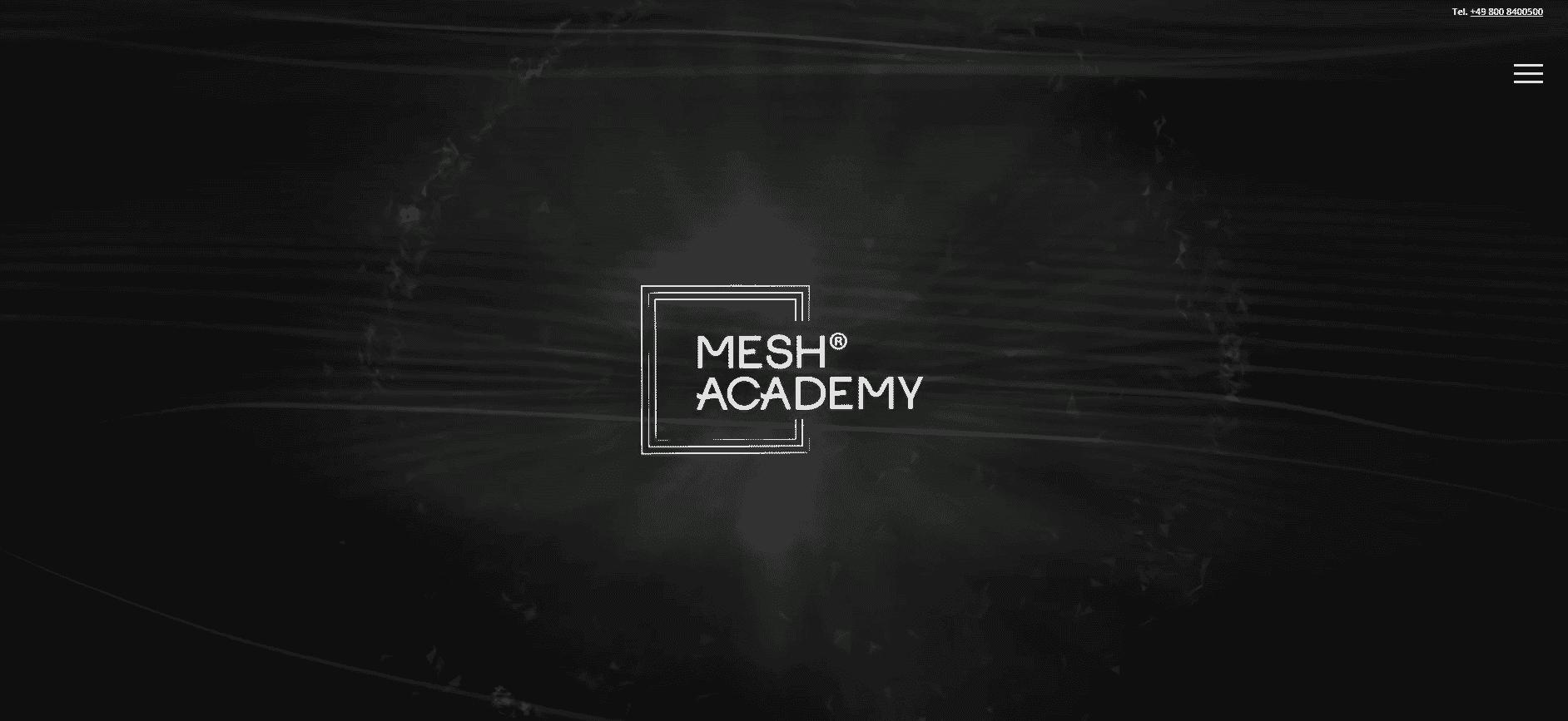 mesh academy